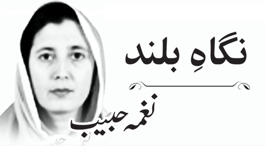 Latest Column, Naghma Habib, Literacy Rate, Education