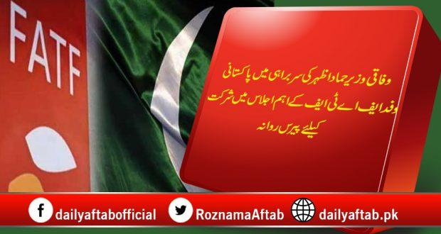 Pakistan, FATF, Grey List, Paris, Hammad Azhar,