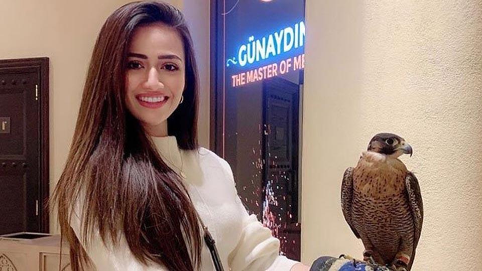 ثناءجاوید, دلچسپ عہد
